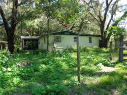 Photo of 3633 Panther Path Road, LUTZ, FL 33559 (MLS # T2898697)