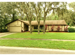 Photo of 3002 Wister Circle, VALRICO, FL 33596 (MLS # T2898868)