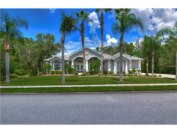 Photo of 11419 Lakeview Drive, NEW PORT RICHEY, FL 34654 (MLS # T2899654)