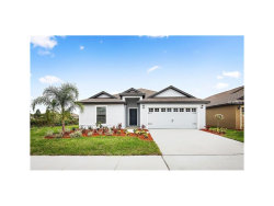 Photo of 11839 Thicket Wood Drive, RIVERVIEW, FL 33579 (MLS # T2899694)