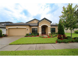 Photo of 8418 Bluevine Sky Drive, LAND O LAKES, FL 34637 (MLS # T2899793)