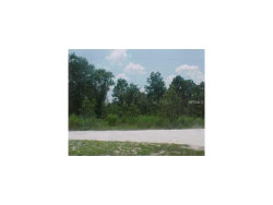 Photo of 6937 Land O Lakes Boulevard, LAND O LAKES, FL 34638 (MLS # T2899942)