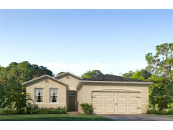 Photo of 13601 Hunting Creek Place, SPRING HILL, FL 34609 (MLS # T2900468)