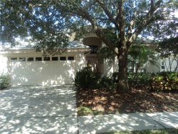 Photo of 17629 Nathans Drive, TAMPA, FL 33647 (MLS # T2900732)