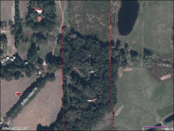 Photo of 2325 Indian Hollow Trail, SEFFNER, FL 33584 (MLS # T2904677)