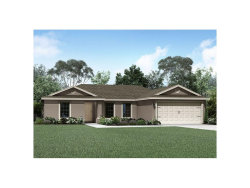 Photo of 313 Southern Winds Boulevard, DELAND, FL 32720 (MLS # T2908442)