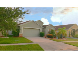 Photo of 5338 Clover Mist Drive, APOLLO BEACH, FL 33572 (MLS # T2908600)