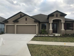 Photo of 11629 Iris Spring Court, RIVERVIEW, FL 33579 (MLS # T2908635)