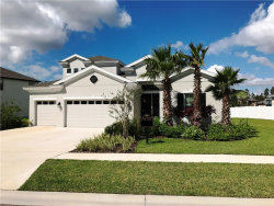 Photo of 19343 Lonesome Pine Drive, LAND O LAKES, FL 34638 (MLS # T2908646)