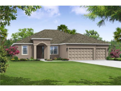 Photo of 11624 Iris Spring Court, RIVERVIEW, FL 33579 (MLS # T2909041)