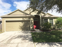 Photo of 13206 Beechberry Drive, RIVERVIEW, FL 33579 (MLS # T2909315)
