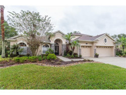 Photo of 2246 Climbing Ivy Drive, TAMPA, FL 33618 (MLS # T2909584)