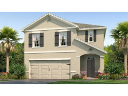 Photo of 129 Lacewing Place, VALRICO, FL 33594 (MLS # T2914236)