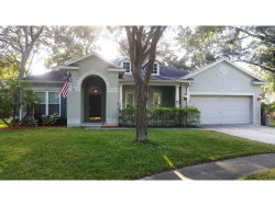 Photo of 1535 Rolling Meadow Drive, VALRICO, FL 33594 (MLS # T2916485)