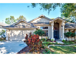 Photo of 1073 Clippers Way, TARPON SPRINGS, FL 34689 (MLS # T2917664)