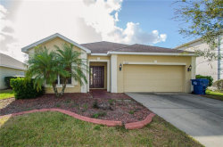 Photo of 6033 Blue Sage Drive, LAND O LAKES, FL 34639 (MLS # T2918254)