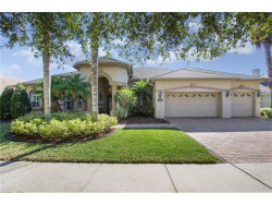Photo of 20928 Lake Vienna Drive, LAND O LAKES, FL 34638 (MLS # T2918300)