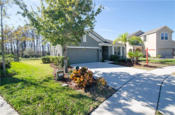 Photo of 5329 Dittany Court, LAND O LAKES, FL 34639 (MLS # T2918403)