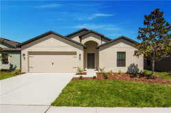 Photo of 904 Wynnmere Walk Avenue, RUSKIN, FL 33570 (MLS # T2918607)