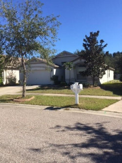 Photo of 1134 Barclay Wood Drive, RUSKIN, FL 33570 (MLS # T2918735)