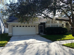 Photo of 2529 Wrencrest Circle, VALRICO, FL 33596 (MLS # T2918973)