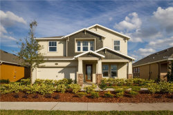 Photo of 1740 Nature View Drive, LUTZ, FL 33558 (MLS # T2919013)