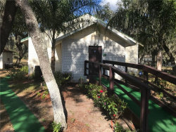 Photo of 15132 Dr Martin Luther King Jr Boulevard, DOVER, FL 33527 (MLS # T2919158)