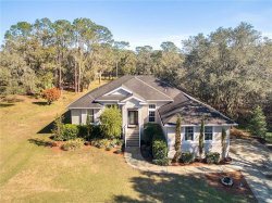 Photo of 2752 Donnelly Road, VALRICO, FL 33596 (MLS # T2923654)