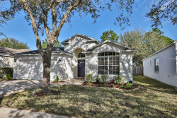 Photo of 6838 Monarch Park Drive, APOLLO BEACH, FL 33572 (MLS # T2923975)
