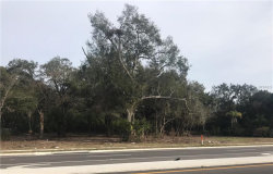 Photo of 435 W Dr Martin Luther King Jr Boulevard, SEFFNER, FL 33584 (MLS # T2924413)