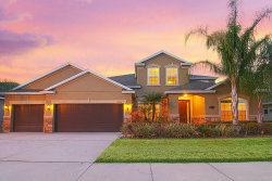 Photo of 19326 Yellow Clover Drive, TAMPA, FL 33647 (MLS # T2924738)