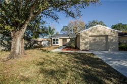 Photo of 14013 Fullerton Drive, TAMPA, FL 33625 (MLS # T2924866)