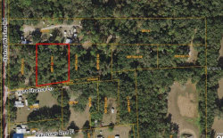 Photo of Sydney Washer Road, DOVER, FL 33527 (MLS # T2925232)