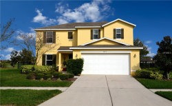 Photo of 5213 Butterfly Shell Dr, APOLLO BEACH, FL 33572 (MLS # T2928527)