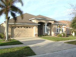 Photo of 10808 Rockledge View Drive, RIVERVIEW, FL 33579 (MLS # T2929535)