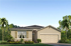 Photo of 5005 Jackel Chase Drive, WIMAUMA, FL 33598 (MLS # T2931880)