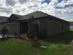 Photo of 14311 Haddon Mist Dr, WIMAUMA, FL 33598 (MLS # T2933855)