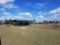 Photo of 21527 Keene Road, WIMAUMA, FL 33598 (MLS # T2934300)