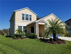 Photo of 19250 Alexandrea Lee Court, LAND O LAKES, FL 34638 (MLS # T2935059)