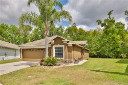 Photo of 4610 Mcbrine Court, LAND O LAKES, FL 34639 (MLS # T2935112)