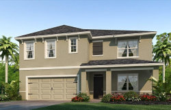 Photo of 4009 Willow Branch Place, PALMETTO, FL 34221 (MLS # T2935253)
