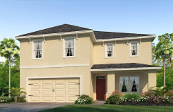 Photo of 4906 Willow Branch Place, PALMETTO, FL 34221 (MLS # T2935255)