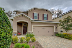 Photo of 16310 Bayberry View Drive, LITHIA, FL 33547 (MLS # T2935655)