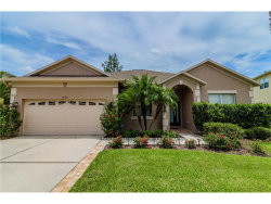 Photo of 10781 Plantation Bay Drive, TAMPA, FL 33647 (MLS # U7823772)