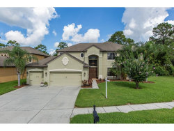 Photo of 14907 Princewood Lane, LAND O LAKES, FL 34638 (MLS # U7829989)