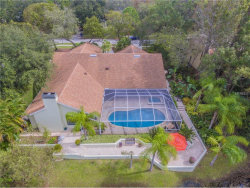 Photo of 3160 Meadow View Lane, PALM HARBOR, FL 34683 (MLS # U7835188)
