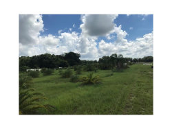 Photo of 000 Popago Estates Lot 3 Lane, DOVER, FL 33527 (MLS # U7835816)