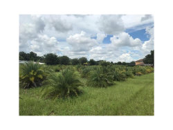 Photo of 000 Popago Estates Lane, DOVER, FL 33527 (MLS # U7835827)