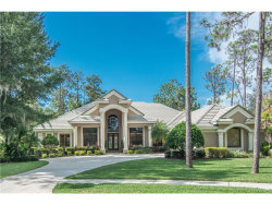 Photo of 1348 Preservation Way, OLDSMAR, FL 34677 (MLS # U7838275)