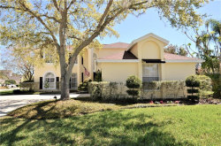 Photo of 1995 Lago Vista Boulevard, PALM HARBOR, FL 34685 (MLS # U7848603)